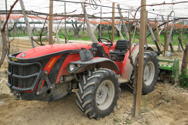 Provato da voi trattore antonio carraro trg 9800 serie for Trattori usati antonio carraro 7500