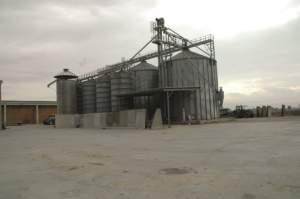 Essiccazione e stoccaggio dei cereali sono uno dei servizi che Santelli offre ai clienti.