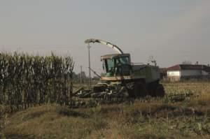 Claas 860, una delle tre trinciacaricatrici in attività presso l'azienda Silvestro.