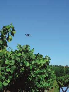 Il vantaggio principale dei droni è la possibilità di monitorare un'intera coltura realizzando mappe di vigore a costi contenuti e con maggiore frequenza, con minori limiti derivanti dal clima.
