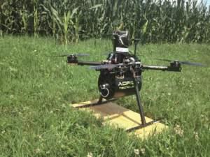 Tra le sperimentazioni che hanno già fatto ricorso con successo ai droni spicca la lotta alla piralide del mais con il Trichogramma brassicae.