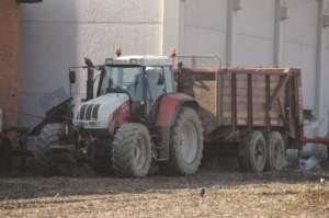 A parte un Fendt 415 Vario, Armando ha scelto, per i trattori, Steyr.