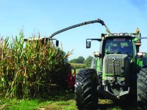 Nova Agricoltura Mais