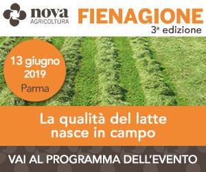 Nova Agricoltura Fienagione 2019